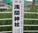 hatuyama3